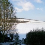 George and Dragon snow covered: birdwatching, birdwatchers, birding, birders