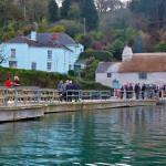 Pandora Inn dockside on the sea for bird watchers that enoy good pub grub, birdwatching, birding, birders