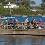Pandora Inn Floating deck for birdwatching, birdwatchers, birding, birders