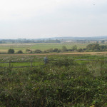 Pulborough View for bird watching, birders, birding, bird watchers