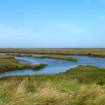 White Horse View for birdwatching, birdwatchers, birding, birders