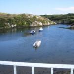 Heron's Cove Goleen bird watchers, birding, birders