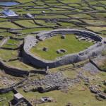 Inis Meain, castle ruin, bird watching, birders, birding
