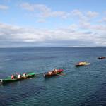 Inis Meain, bird watching rowers sport, birders, birding