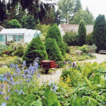 Potting Shed Garden - bird watchers escape, birdwatching, birding, birders