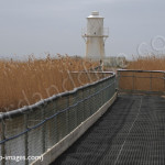 bridge overthe wetlands birdwatching, birdwatchers, birding, birders