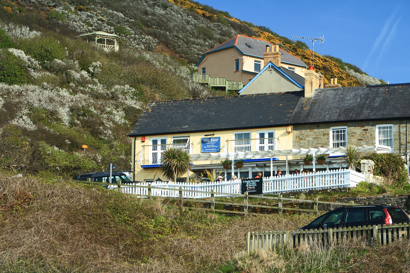 Ship Inn Tresaith Birding And Dining At The Same Time